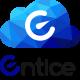 Entice Logo